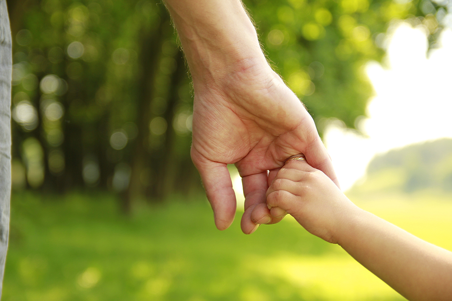 fayetteville family law attorneys